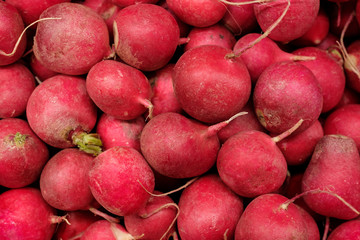 Group of small red radish view from top