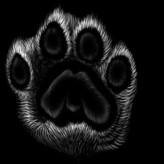 The Vector logo paw for T-shirt design or outwear. This drawing would be nice to make on the black fabric or canvas.