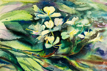 Watercolor painting original flower colorful of flowers beauty
