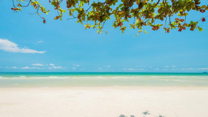Wall Mural - Beautiful daylight and Breathtaking tropical beach at Koh Chang Island, Wonderful tropical beach for relaxation and travel, Special white sandy at the exotic beach