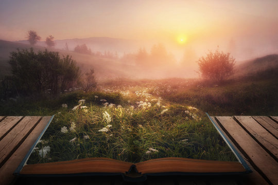 open fairytale magical book. amazing  view with foggy trees on horizon on sunrise. autumn landscape. beautiful natural background