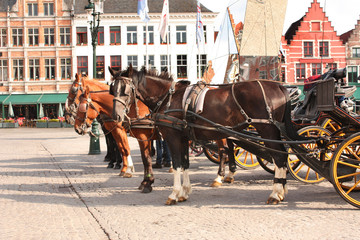 Wall Murals Bridges Old houses and horse carriages on Grote Markt square, Brugge, Belgium