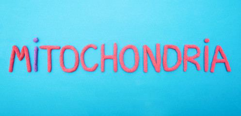 inscription mitochondria with red plasticine on a blue background, organella, medical