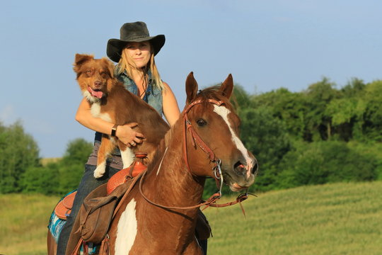 Westernreiterin mit Pferd und Hund