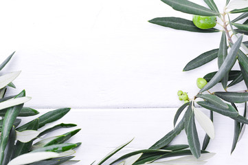 Fresh olive branch with berries on a white wooden background. Traditional plant of Italy. Free space for text. Flat lay.