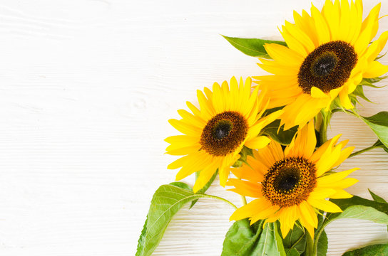 Autumn background with a bouquet of yellow sunflowers against a white brick wall.