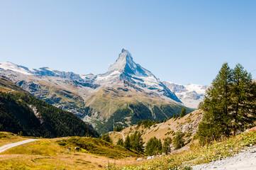 Zermatt, Findeln, Matterhorn, Sunnegga, Alpen, Wallis, Wanderweg, Weiler, Alm, Bergwiesen, Bergkräuter, Sommer, Schweiz