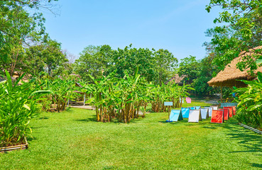 On the lawn of Poopoopaper park, Chiang Mai, Thailand