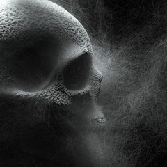 3d render of a creepy dark gray skull turned sideways with a hollow socket of one large eye, small nose and little teeth