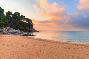Fototapete - Tropic beach at sunrise