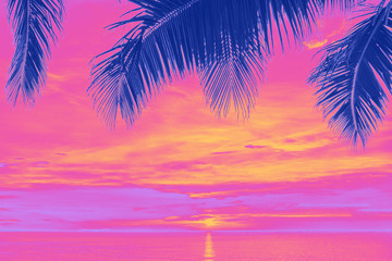 Sunset and palms Wall mural