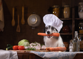 dog in the kitchen with vegetables. Nutrition for animals, natural food. Border Collie in a Cooking Hat Wall mural