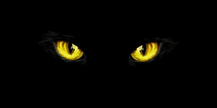 Black cat's yellow eyes on black background. Halloween card, invitation, animal hand drawn illustration. Halloween element for design