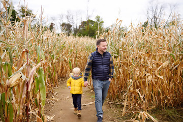 Little boy and his father having fun on pumpkin fair at autumn. Family walking among the dried corn...
