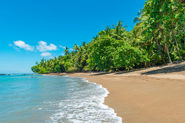 A Pacific Ocean wave on a tropical beach inside Corcovado national park, Osa Peninsula, Costa Rica, Central America.