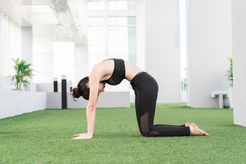 Healthy and fitness concept. Beautiful sport woman doing a yoga pose at home.