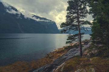 Fototapete - Beautiful landscape, the coast of the Fjord in Norway, clouds and mountains are reflected in clear water