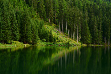 Dark green waters of an idyllic lake in the forest. Wall mural