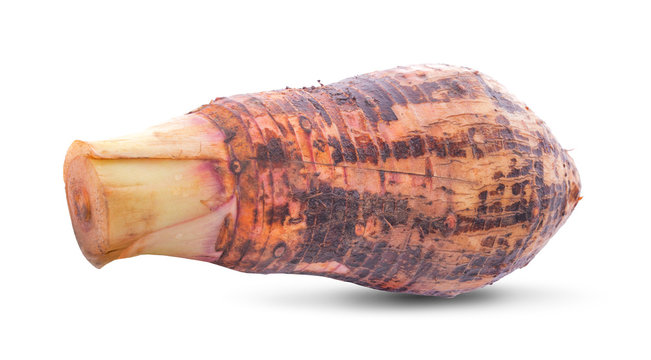 Sweet taro root, Satoimo potatoes or sliced of taro (Yautia Lila) isolated on white background
