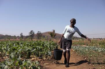 Gracious Chivhirinyongo carries a bucket to water her mother's garden in Warren Park
