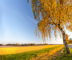 Photo Stands Melon Autumn sunny landscape with colorful view Lower Saxony