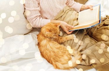 Fototapete - pets, hygge and people concept - red tabby cat and female owner reading book in bed at home