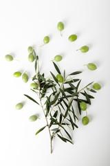 Fototapete - ramo di ulivo e olive verdi attorno