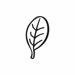 Abstract doodle leaf. Icon, logo, symbol drawn by hand. Isolated vector illustration.