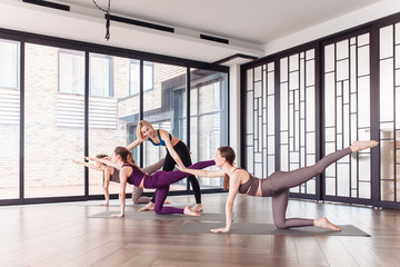 Beautiful young woman pilates instructor teaches her students how to do Donkey Kick exercise, Bird dog pose in spacious gym. Concept of joint training and healthy lifestyle. Yoga class, workout