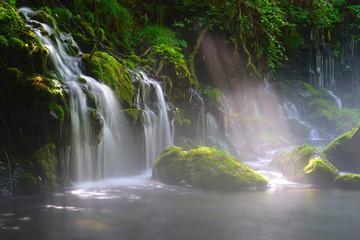Foto op Canvas Mototaki falls, Nikaho city , Akita Pref., Japan