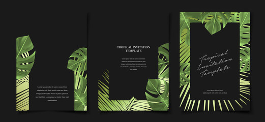 Set of elegant black and green tropical foliage monstera palm leaf cover layout template
