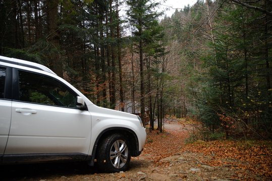 white suv car in autumn forest gazebo bbq place