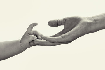 Baby hand in mother's hand. Black and white, isolate image.