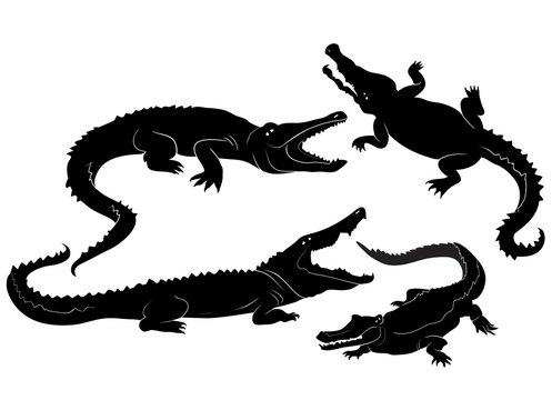 Vector Crocodile Silhouettes Set