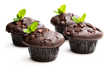 Four chocolate muffins isolated on white decorated with mint leaves