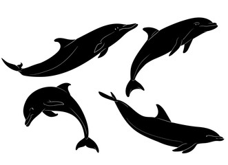 Photo sur Aluminium Dauphins Vector Dolphin Silhouettes Set