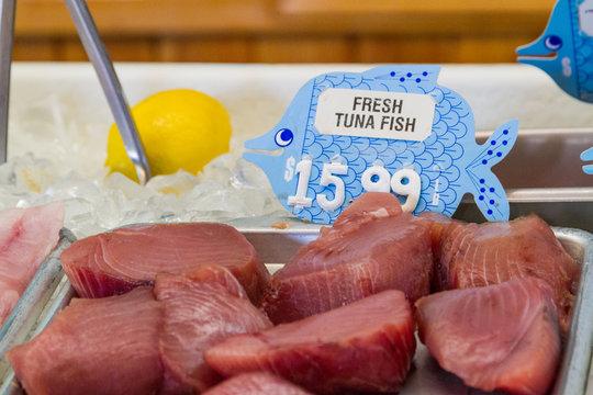 Fresh tuna fish on ice at the seafood market