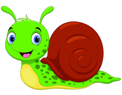 Vector illustration of cute snail cartoon isolated on white background