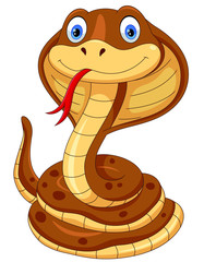 Cute cobra snake cartoon isolated on white background