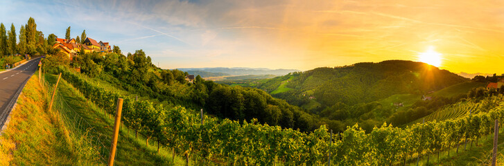 Foto auf Leinwand Weinberg Landscape panorama of vineyard on an Austrian countryside with a church in the background in Kitzeck im Sausal