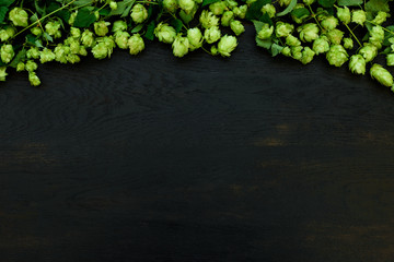 Hop cones border on black wooden background. Harvesting or brewery concept. Top view. Flat lay.