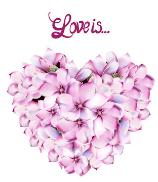 Lilly flowers love card vector watercolor. Isolated background. Provence flowers banner