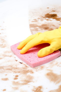 Hand Cleaning Counter or Floor Covered in Spills Using a Sponge