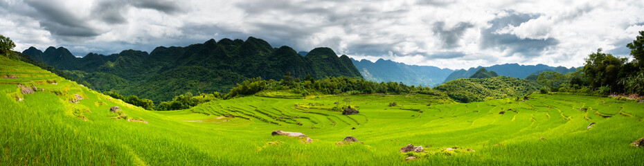 Terraced green and yellow rice fields of Pu Luong, close to Mai Chau in Thanh Hoa province. Transition stage to harvest season in Pu Luong. Stitched panorama.