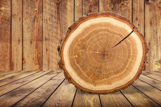 Wood round slice on wooden desk