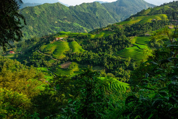 Landscape of Vietnam, terraced rice fields of Hoang Su Phi district, Ha Giang province. Spectacular rice fields.