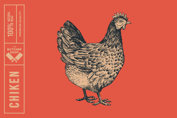 Graphical drawn chiken on red background. Hand-drawn retro picture with a poultry in an engraving style. Can be used for menu restaurants, for packaging in markets and shops. Vector illustrations.