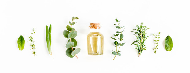 Essential oil and green branches, leaves eucalyptus on white background. Medicinal herbs. Flat lay. Top view.