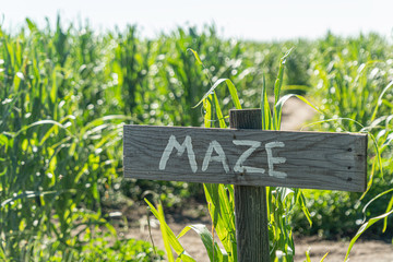 a maze sign in front of a corn farm