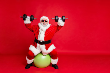 Full length body size view of his he cheerful cheery glad funky fat overweight plump gray-haired bearded man lifting weight body building isolated over bright vivid shine red background